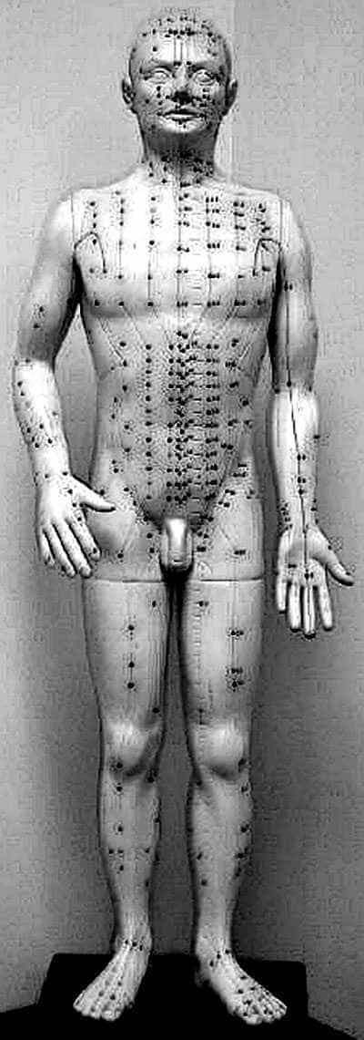 Acupuncture doll.