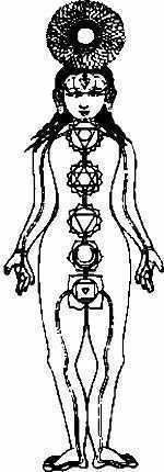 The seven chakra and their positions on the body.
